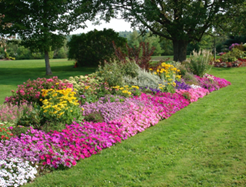 commercial lawn care Kennesaw GA