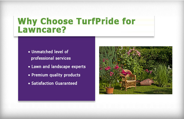 TurfPride Lawncare