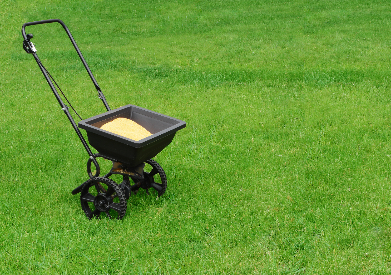 Tips For Lying Fertilizer To Your Lawn Turfpride