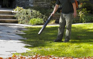 A landscaper maintains a lawn.