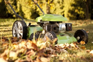 Lawn mower with autumn leaves in Atlanta